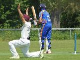 Mohsin Bajwa survives a big appea