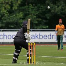 Plenty of bounce in the wicket